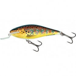 SALMO EXECUTOR F TROUT